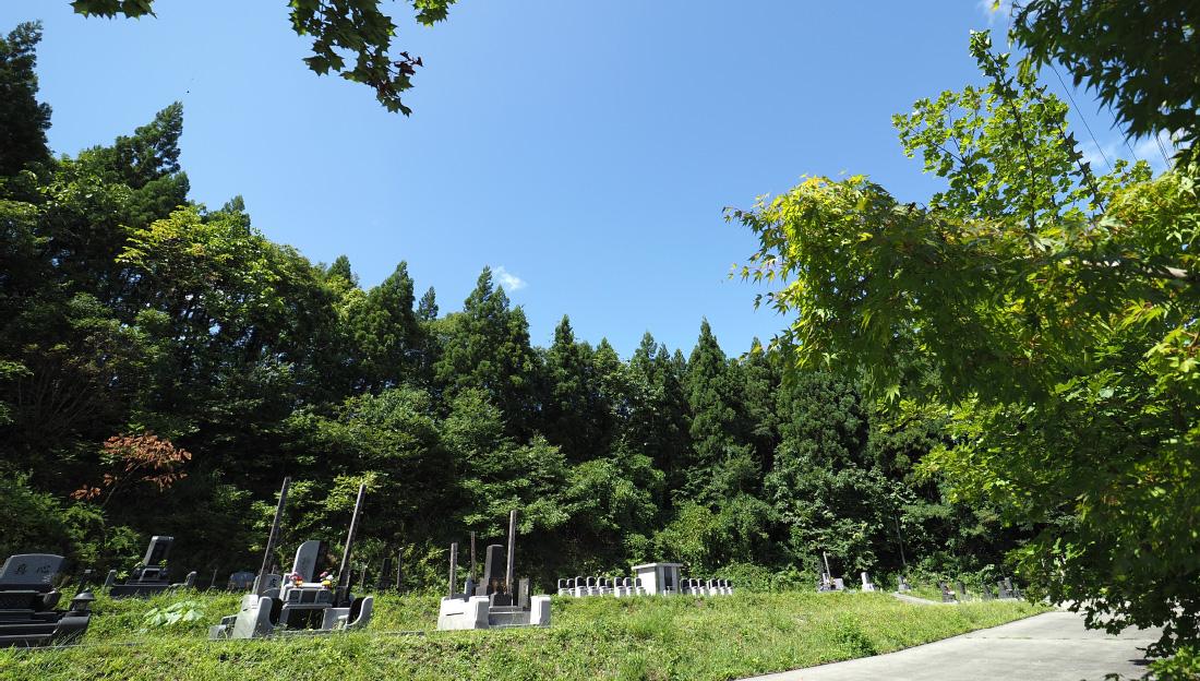 写真:仙北墓苑 朝陽の杜